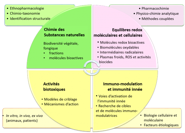 strategie-scientif